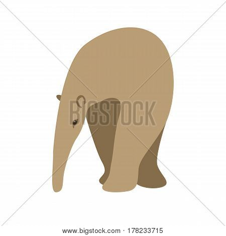 anteater vector illustration style Flat front side