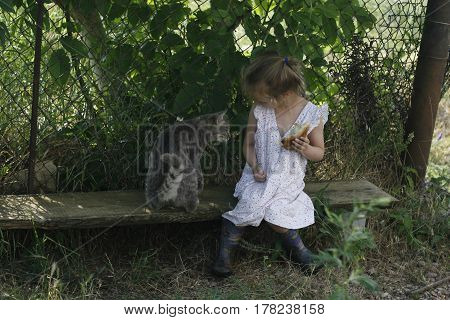 little cute girl in a bright vintage dress and rubber boots feeds a cat sitting on a bench in the shade of a large tree