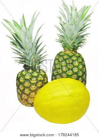 honeymelon and two pineapples tropical fruit isolated
