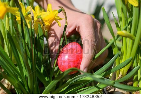 Young Man Hiding A Colorful Red Easter Egg