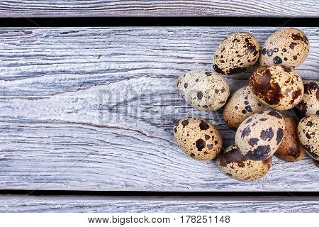 Pile of quail eggs. Eggs on grey wood. Wholesome diet food.