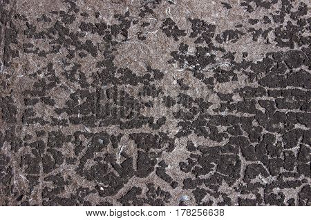 Texture with old dirty gray surface covered with uneven spots