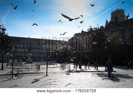 February 21, 2017, Porto, Portugal - doves flying