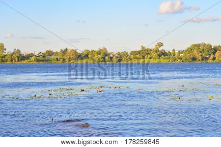 View of Neva River on the outskirts of St. Petersburg at sunny summer evening Russia.