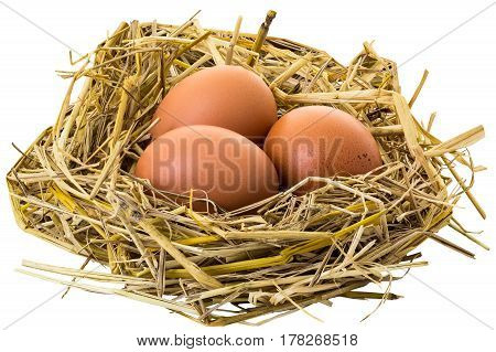 Chicken eggs on the straw nest isolated on white background