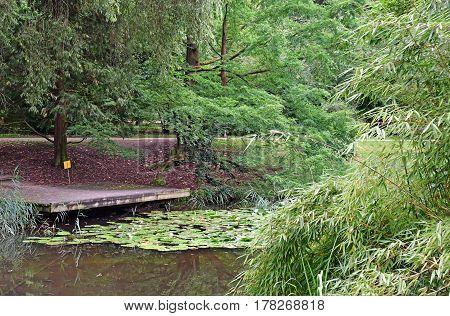 Strasbourg France - july 24 2016 : the botanical garden of the university