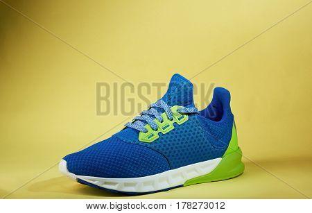 New Modern Trainer Shoe