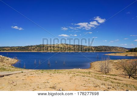 Landscape Of Dried Lake And Trees