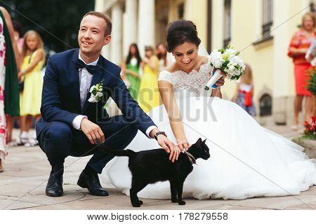 Newlyweds Stroke A Black Cat On The Street