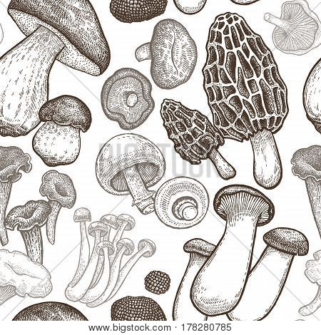 Seamless pattern with mushrooms. Hand drawing elements of nature. Vector art illustration. Black and white. Old engraving. Vintage. Kitchen design for fabrics paper wallpaper packaging wrapping.