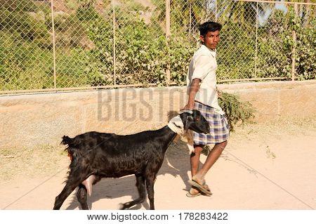 Man Walking With His Goat At Hampi
