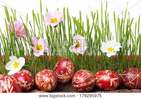 Wax Painted Easter Eggs And Wheat