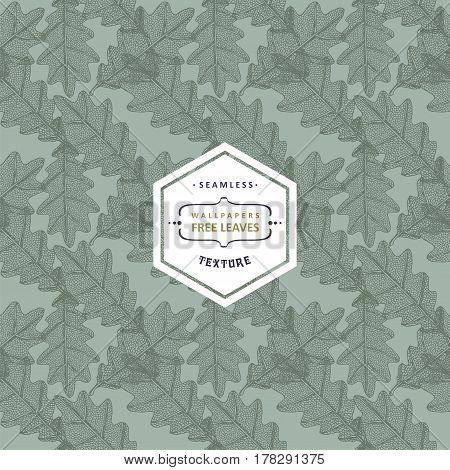 Floral seamless pattern with tree leaves. Maple Elm Oak Aspen textured leaves
