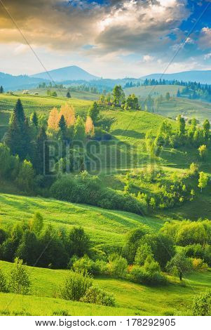 Carpathian Spring Valley