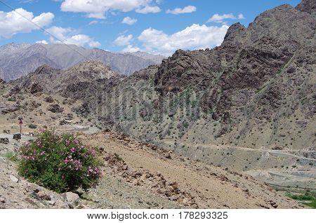 Beautiful landsape near Kargil in Ladakh, India