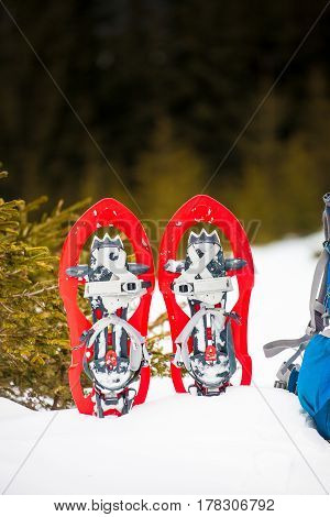 Snowshoes Are On The Snow.