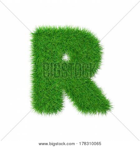 Grass letter R isolated on white 3d illustration.