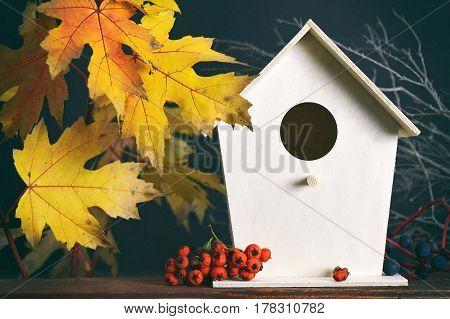 Autumn yellow maple leaves and birdhouse on dark grunge background