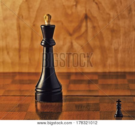 Kings on the board are small and big chess is a very developing intellectual game