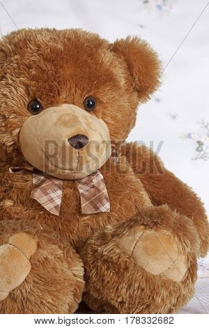 Smiles teddy bear plush friend cute toy