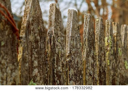Wooden Fence Entangled Barbed Wire Background
