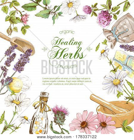 Vector herbal cosmetics frame on white background. Design for herbal tea, natural cosmetics, perfume, health care products, homeopathy, aromatherapy. With place for text