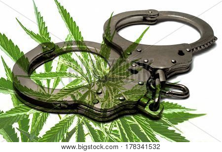 police handcuffs lying on a white background with marijuana drug cannabis.