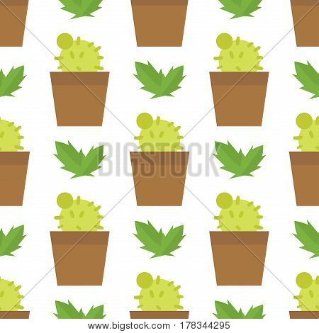 Green desert plant nature cartoon cactus and mexican summer cute cartoon seamless pattern tropical sand tree flower vector illustration. Funny needle thorn western spike bloom.