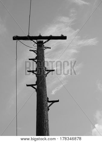 Vintage Telegraph Pole In Black And White