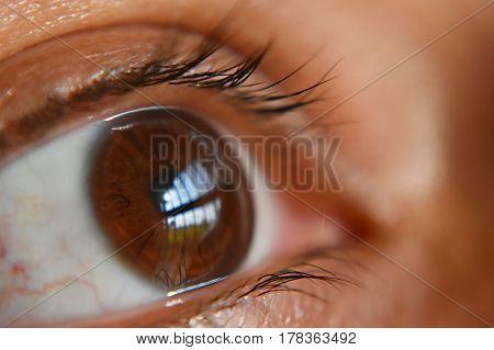Reflection of a scene through an eye