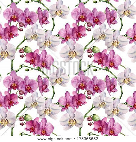 Watercolor floral pattern with orchids. Hand painted botanical ornament with white and violet flowers. For design, fabric or print