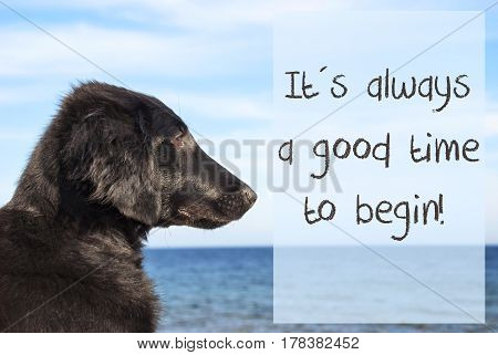 English Quote There Is Always A Good Time To Begin. Flat Coated Retriever Dog Infront Of Ocean. Water In The Background