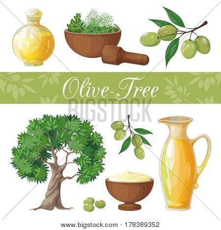 Vector set of objects isolated on white background. On the theme of the olive tree, olive production and its application. It achieved in a realistic style.