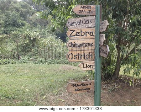 Wooden signs listing African animals on display at zoological park in Uganda.