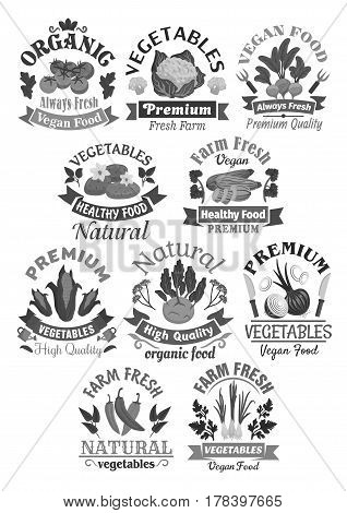 Vegetables vector icons of farm veggies harvest tomato and cauliflower, radish or beet and potato, zucchini squash and corn. Fresh vegan onion, kohlrabi and seasonings for vegetable store
