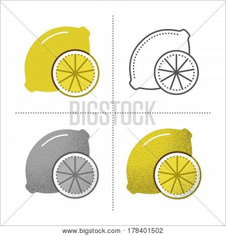 Set of lemon icons in different styles: retro, flat, thin line, black and white with vintage texture. Fresh sour citrus slice with vitamin C. Vector illustration isolated on white background.