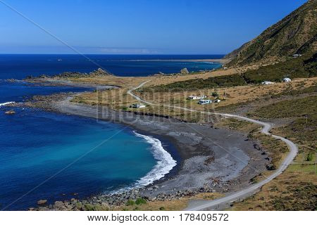 New Zealand coastal landscape at the North Island, Cape Palisher, location - Wellington, North Island, New Zealand
