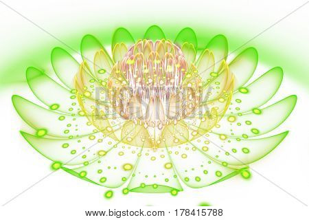 Abstract Exotic Flower On White Background. Fantasy Fractal Design In Green, Yellow And Beige Colors