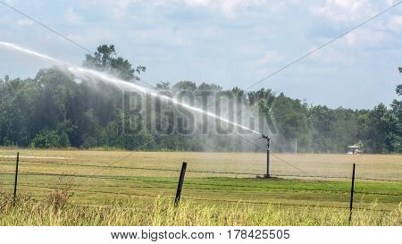 Irrigation head pumping to the left in a field