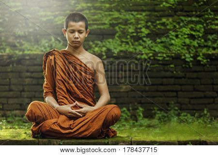Novice monk meditating in thailand , buddha.