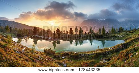 Lake tree reflection in water iin Dolomites