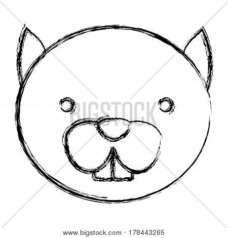 blurred silhouette caricature face cute chipmunk animal rodent vector illustration