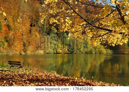 Autumn landscape with a bench on a sunny day. Lac de Lucelle (Lucelle Lake) Switzerland