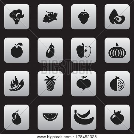 Set Of 16 Editable Fruits Icons. Includes Symbols Such As Cantaloupe, Jungle Fruit, Eggplant And More. Can Be Used For Web, Mobile, UI And Infographic Design.