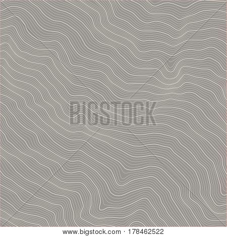 Vector abstract earth relief map. topographic map with gray background