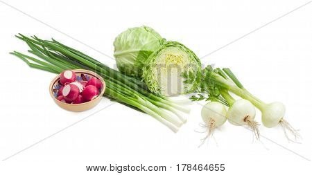 Whole and cut in half heads of the young fresh white cabbage stalks of the green onion young bulb onions with parsley twig and a bowl with red radish on a light background