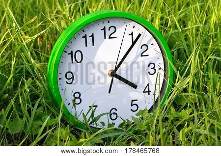 The Wall Clock Is In The Green Grass