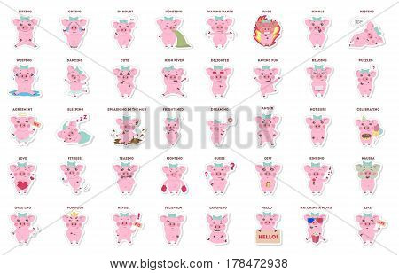cute pig, stickers collection in different poses, different moods. vector illustration.