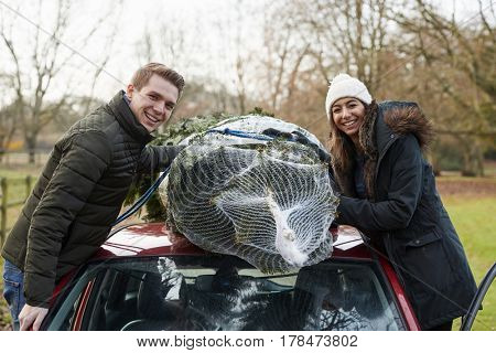 Couple tying Christmas tree to car roof look to camera