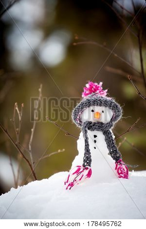 Snowman with handmade hat and scarf